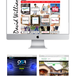 Christie Lee and Associates Websites